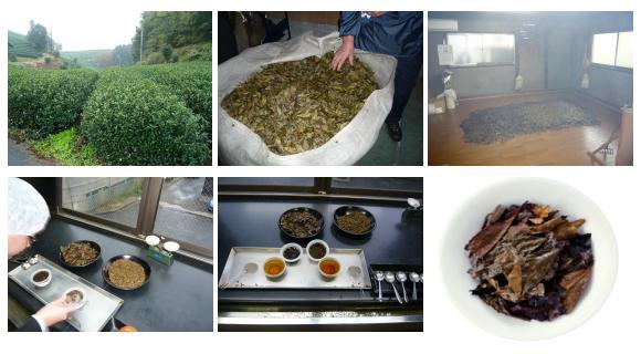 京都で古くから親しまれる「京番茶」